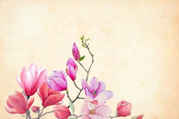 flower-3350053_640