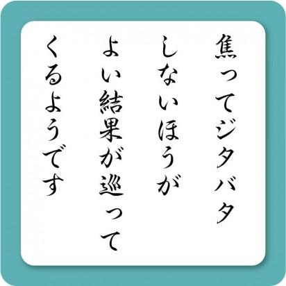 image2 (18)